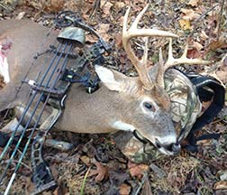 Gordon McNaney's buck shot with a bow